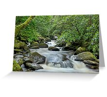 Torc , Kerry, Ireland. Greeting Card