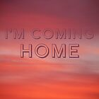 Coming Home by sandra arduini