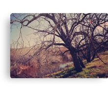 Forever in My Heart Canvas Print