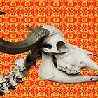 African Buffalo Skull on a Fractal by Almdrs