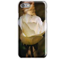 inner light iPhone Case/Skin