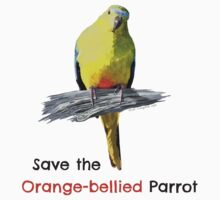 Orange-bellied Parrot sticker by OBparrot
