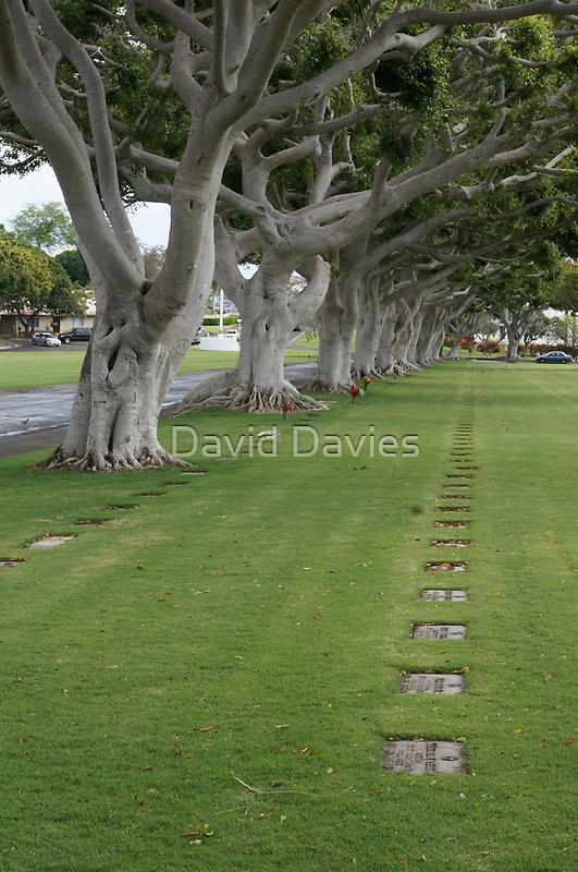 National Memorial Cemetery of the Pacific II by David Davies