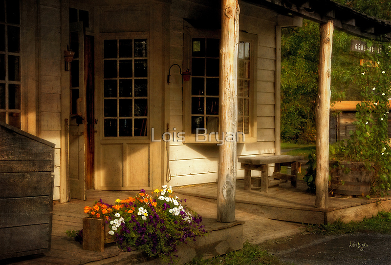 Old Bedford Village General Store by Lois  Bryan