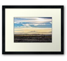 Colorado Driftwood Open Spaces Framed Print