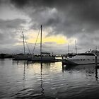 Queenscliff - Early Morning Calm by Larry Lingard-Davis