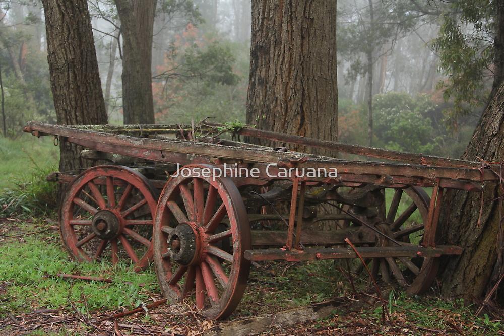 Wagon Wheels by ©Josephine Caruana