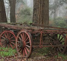 Wagon Wheels by ©Josephine Caruana