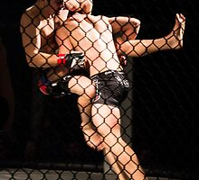 MMA6 by ArchivePhoto