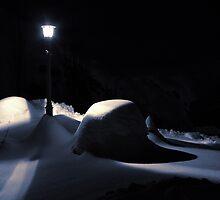 Winter Night Light by DaleCody