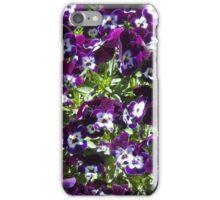 Violas in the garden iPhone Case/Skin