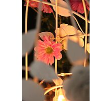 Elegance of a Flower Photographic Print