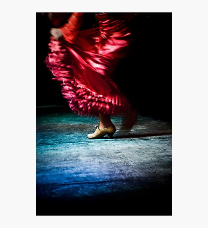 Flamenco Photographic Print