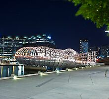 Webb Bridge, Docklands  by dsi-photography