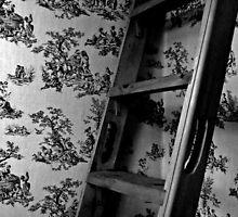 ladder  by Jonny  McKinnon
