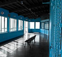 Santa Monica Pier Blue Room by guinapora