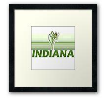 Retro Indiana Framed Print