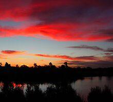 Wetlands Sunset by Chris Kean