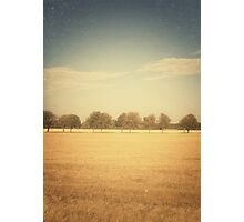 Travelling Memories: Pure Nature in Denmark (Vintage) Photographic Print