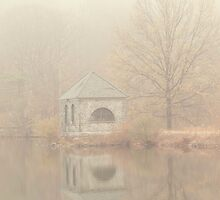 Foggy morning on the lake by Debbie Allan