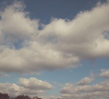Big Blue Sky by Debbie Allan