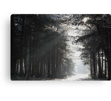 Black and White Snowscape Canvas Print