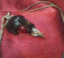 BIRD SKULL NECKLACE by chowbaby