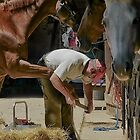 Farrier by Martin Harradine