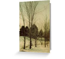 December Trees Greeting Card