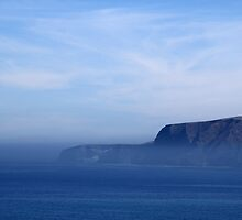 Santa Cruz Island by Henrik Lehnerer
