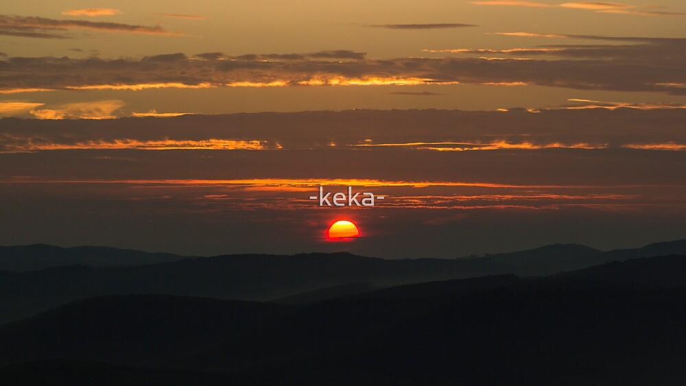 life doner by -keka-