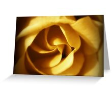 NOVEMBER ROSE Greeting Card