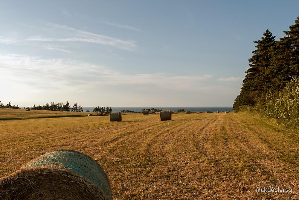 Farmland by nickdeclercq
