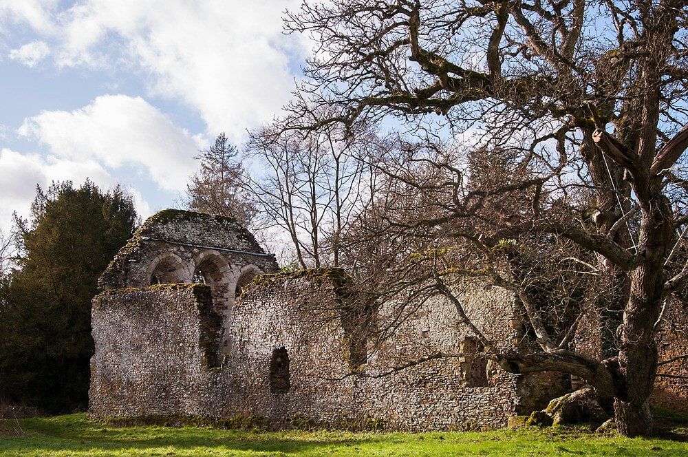 Waverley Abbey by James Taylor