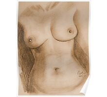 Nude Female Torso - PPSFN-0002-in Sepia Poster