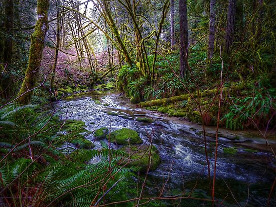 Perfect Feeling by Charles & Patricia   Harkins ~ Picture Oregon