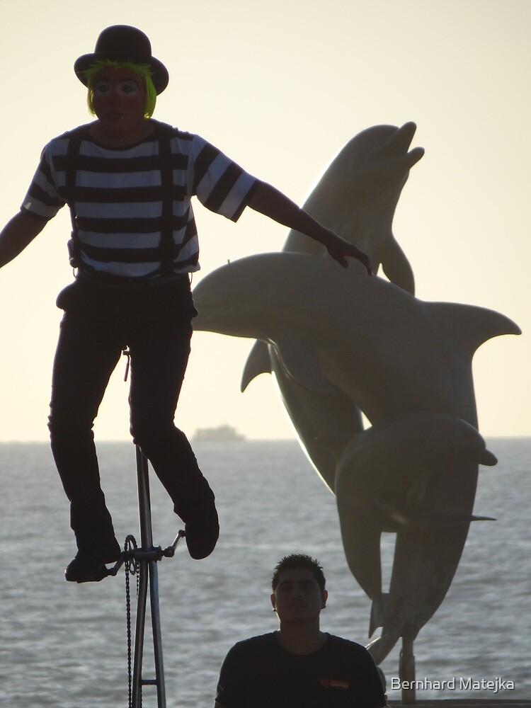 The Clown, The Tourist And The Dolphins - El Payaso, El Turista Y Los Delfines by Bernhard Matejka