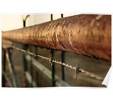 Cattle Fence Poster