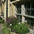 Romantic window in the Cotswolds by hans p olsen