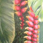 Bananeira de jardim by annabrazao