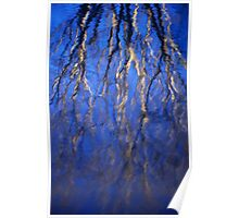 Tree Reflection on the Water Poster