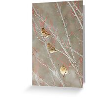Three In A Tree ~ Greeting Card