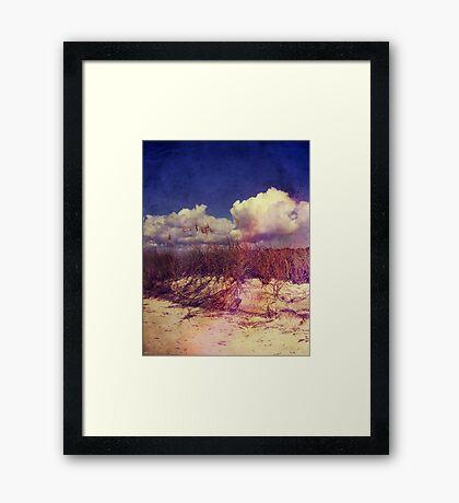 South Carolina Sand Dunes Framed Print