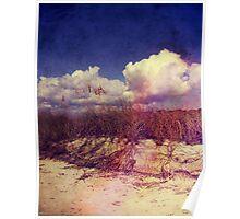 South Carolina Sand Dunes Poster