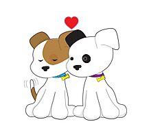 Puppy Couple Photographic Print