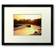 Down By The Water - III Framed Print