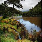 Buller river, NZ by andreisky