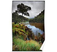 Buller river, NZ Poster