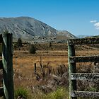 Who Left the Gate Open? by johngs