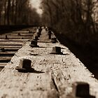 Bridge Bolts by Rick McKee